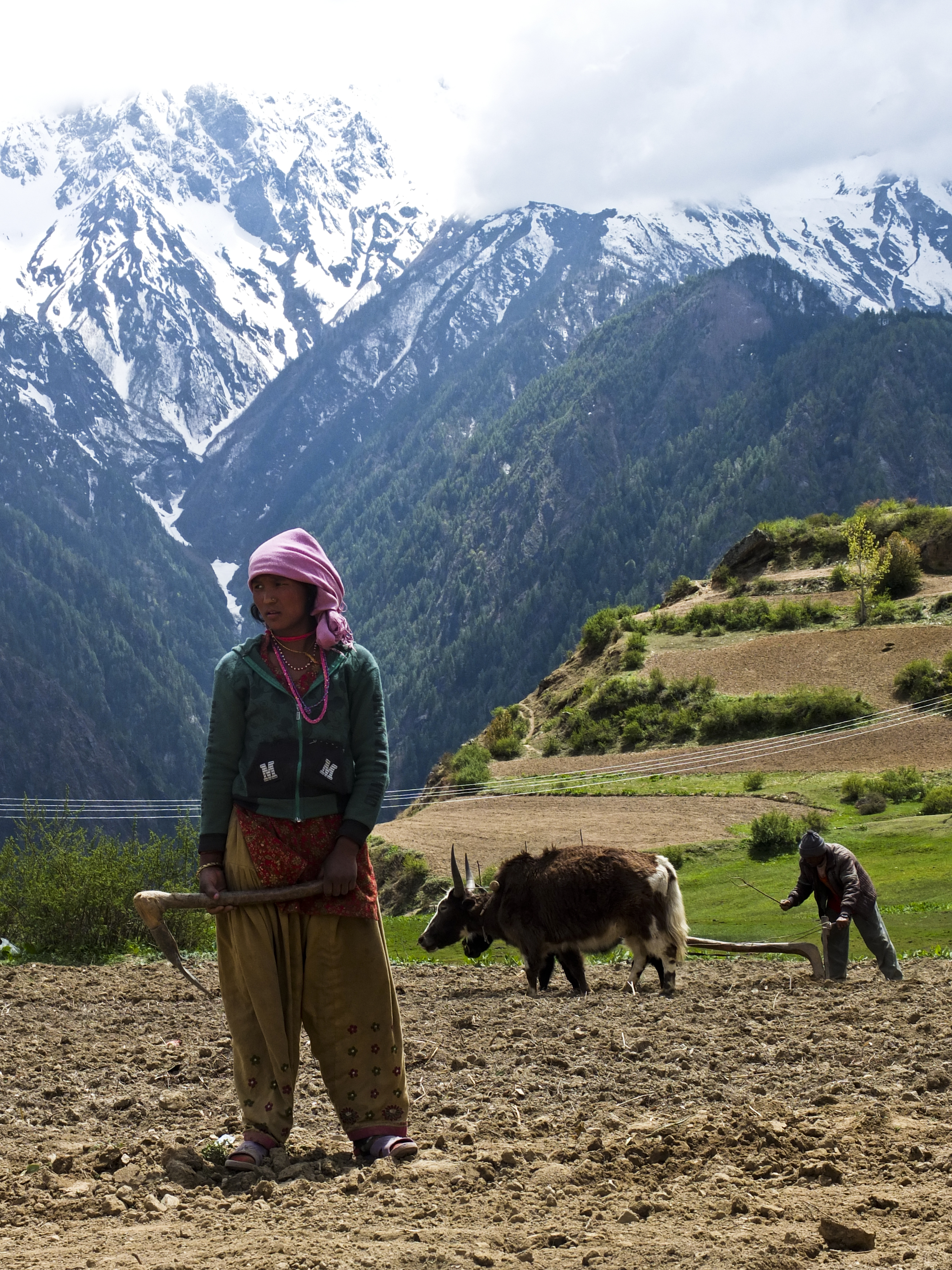 AGR-Nepal-Humla-2013-MA-009
